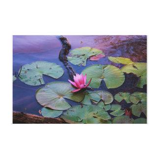 Lilly cor-de-rosa na flor impressão em tela canvas