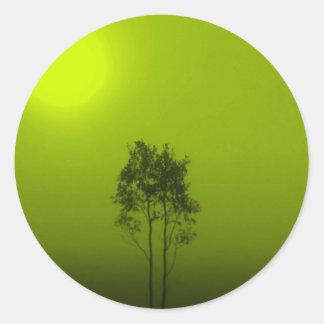 Limeiras Adesivo