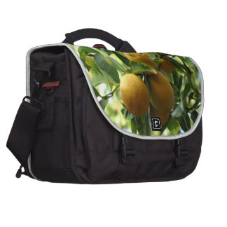 Limões amarelos na árvore pasta para notebooks