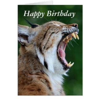 Lince, cartão bonito do feliz aniversario da foto
