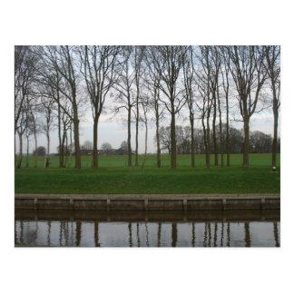 Linha de árvore cartão do canal