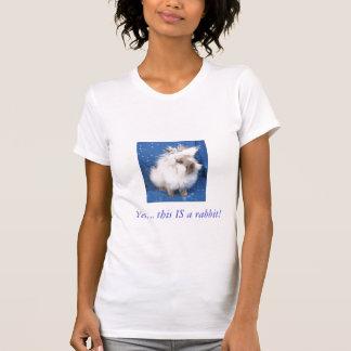 Lionhead Sablept., sim…. este É um coelho! Camisetas
