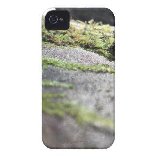 Líquene de Boulder Capinhas iPhone 4