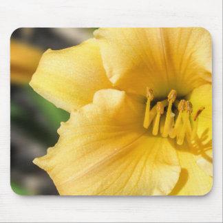 Lírio amarelo deslocado Mousepad floral
