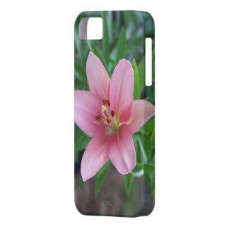 Lírio cor-de-rosa capas para iPhone 5