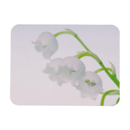 Lírio da flor do vale foto com ímã retangular