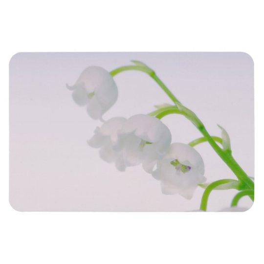 Lírio da flor do vale ímã