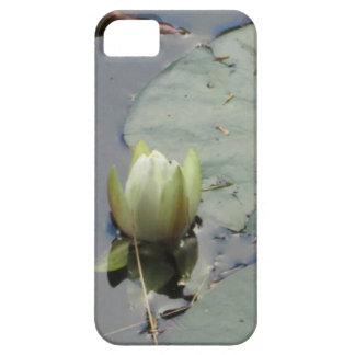 Lírio de água capas para iPhone 5