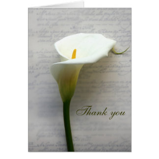 lírio de calla em cartões de agradecimentos velhos