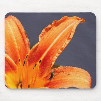 Lírio de dia & bicho deslocados Mousepad floral