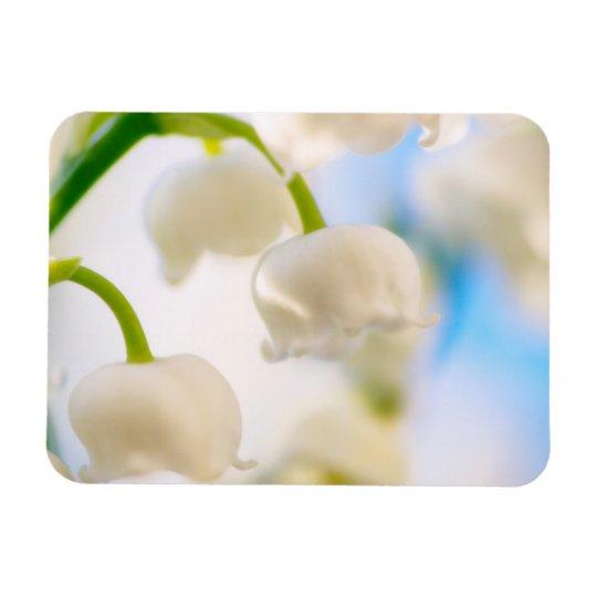Lírio do Fim-acima da flor do vale Foto Com Ímã Retangular