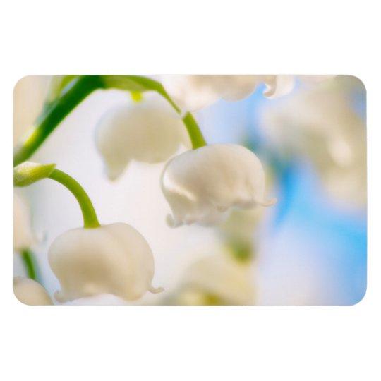 Lírio do Fim-acima da flor do vale Ímã