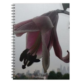 Lírio em Londres Cadernos