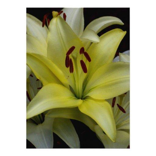 Lírios amarelos e brancos convites personalizados
