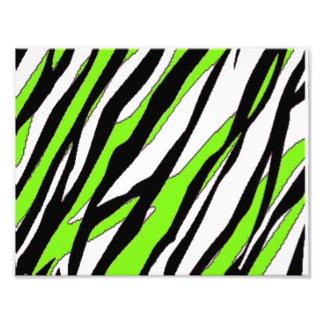Listras da zebra com as listras abstratas do verde impressão de foto