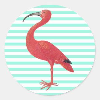 Listras do flamingo & da cerceta - etiqueta das