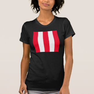 Listras vermelhas corajosas t-shirt