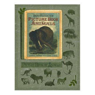 Livro ilustrado do cartão dos animais
