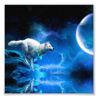Lobo e lua impressão de foto