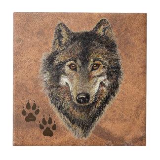 Lobo, lobos, natureza, animais selvagens, animal