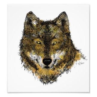 Lobo na cor - impressão da foto
