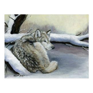 Lobo no cartão animal da arte da neve