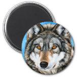 Lobo pintado imas