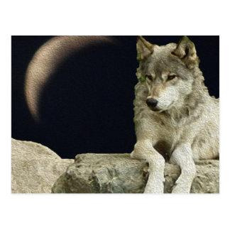 Lobo que relaxa cartão postal