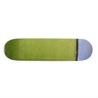 Local de pastagem com uma árvore no horizonte shape de skate 18,7cm