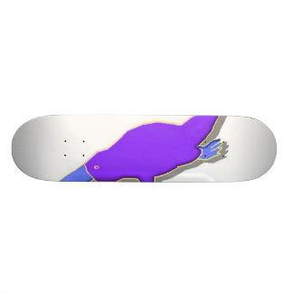 Logotipo da relação skate