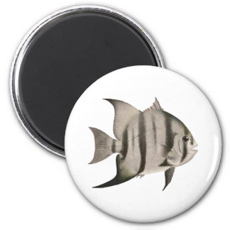 Logotipo de 3 peixe-espadas ímã redondo 5.08cm