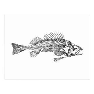 Logotipo do esqueleto dos peixes cartão postal