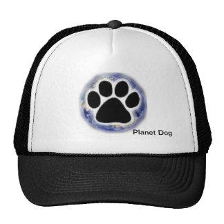 Loja do cão do planeta bones