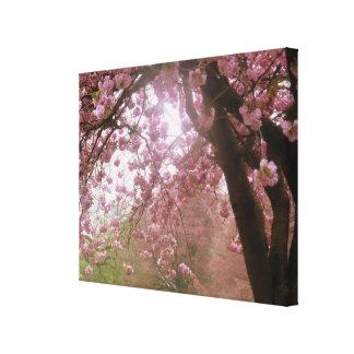 Lona cor-de-rosa bonita da flor da árvore impressão em tela