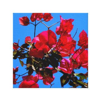 Lona cor-de-rosa da flor