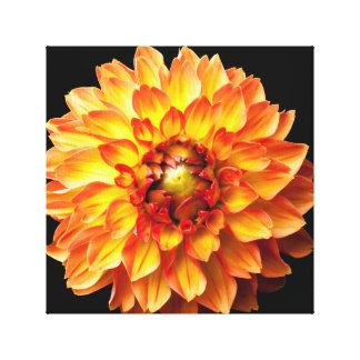 Lona da flor da dália impressão em tela