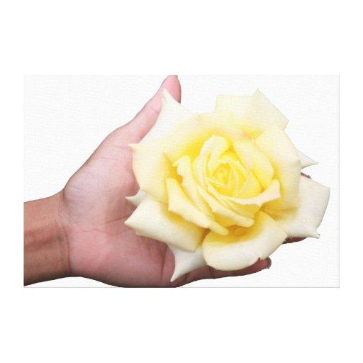 Lona disponivel do rosa branco impressão de canvas envolvida
