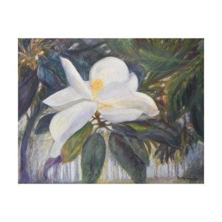 Lona envolvida de FLORIDA MAGNÓLIA VELHA Impressão De Canvas Envolvida