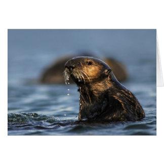 Lontra de mar de Califórnia Cartão Comemorativo