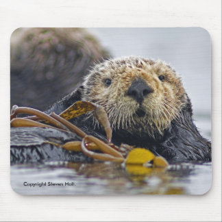 Lontra de mar Mousepad de Califórnia