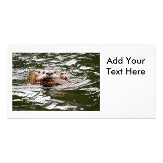Lontra e peixes de rio cartão com foto
