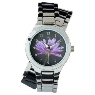 Lotus roxo Waterlily & relógio da libélula