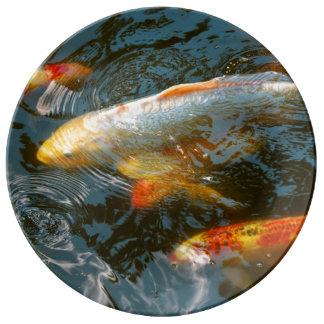 Louça De Jantar Animal - peixe - dê a boa fortuna