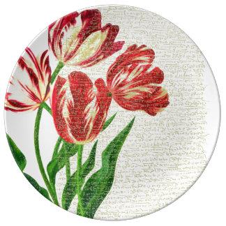 Louça De Jantar Caligrafia vermelha das tulipas