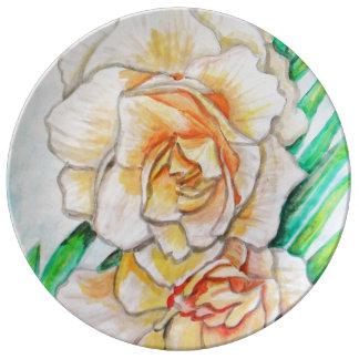 Louça De Jantar Flor da glória