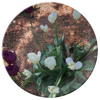 Louça De Jantar Jardim das flores brancas da tulipa da neve