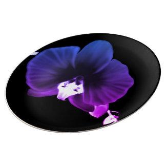 Louça De Jantar Orquídea noturno