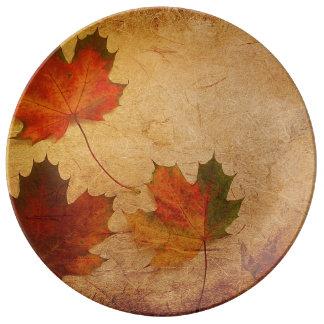 Louça De Jantar Placa da porcelana das folhas de bordo