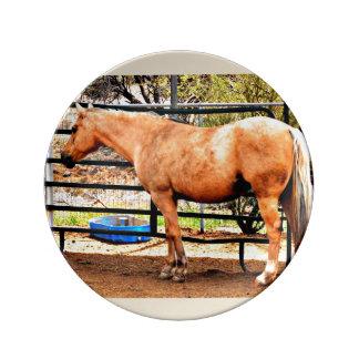 Louça De Jantar Placa decorativa da porcelana - cavalo do Palomino
