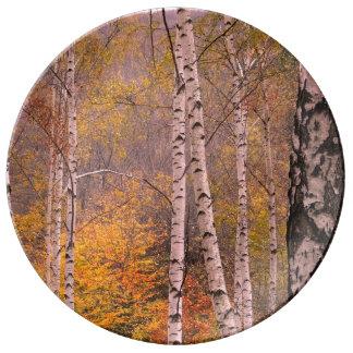 Louça De Jantar Placa decorativa da porcelana do silêncio 27,3 cm
